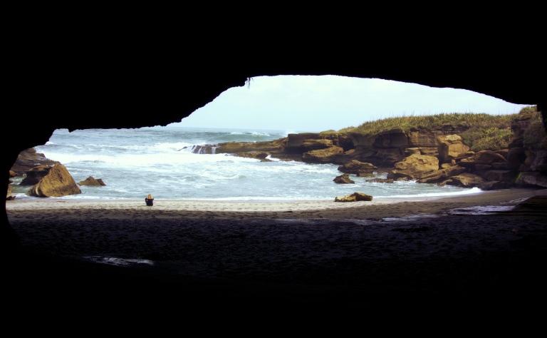 fenna-on-the-beach
