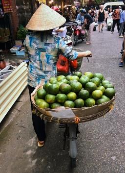 Citrus Lady